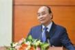 Thủ tướng yêu cầu xử nghiêm người chặt đào rừng mang về xuôi chơi Tết