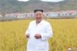 Ông Kim Jong-un mong Tổng thống Trump sớm hồi phục