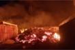 Núi lửa phun trào ở CHDC Congo: 31 người chết, hơn 170 trẻ em mất tích