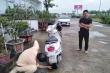 Thanh niên lái xe máy ngược chiều 10km trên cao tốc Hà Nội - Hải Phòng: Thông tin mới nhất