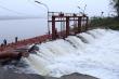 EVN đảm bảo điện bơm nước phục vụ sản xuất nông nghiệp