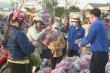 Tiền Giang: Thanh long vào tận bếp ăn khu công nghiệp để được tiêu thụ