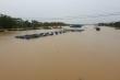 Lũ trên các sông ở Quảng Nam đang xuống chậm