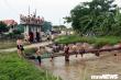 Ảnh: Thanh thiếu niên rủ nhau giải nhiệt ở trạm bơm thủy lợi giữa Hà Nội