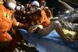 Sập khách sạn cách ly Covid-19 ở Trung Quốc: 60 người thương vong