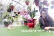 Tâm nguyện mang con chữ đến bản nghèo vùng cao của cô giáo vật lý Thoa Phùng