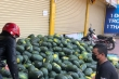 Dịch corona: Nông dân Bình Định 'mướt mồ hôi' bán tháo dưa hấu bị ứ đọng