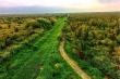 Khám phá khu rừng ở Việt Nam được xếp loại quý hiếm trên thế giới