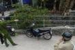 Quảng Ninh: Phát hiện thi thể trẻ sơ sinh còn nguyên dây rốn ở mương nước