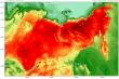Ghi nhận mức nhiệt 38 độ C, Bắc Cực trải qua đợt nắng nóng lịch sử