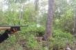 Vào rừng hái rau quả, người đàn ông bị thợ săn bắn nhầm
