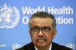 'WHO kêu gọi Mỹ xem lại quyết định rút khỏi tổ chức không phải vì tiền'