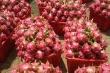 Gặp khó trong xuất khẩu, giá trái cây đồng loạt lao dốc