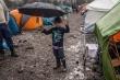 Hậu Brexit: Hiểm họa khôn lường với trẻ em nhập cư vào Anh bằng xe tải