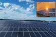 Giá điện mặt trời giảm 24%, doanh nghiệp lo phá sản, Bộ Công Thương nói gì?