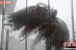 Trung Quốc: Bão Hagupit đổ bộ, nhiều nơi báo động đỏ về thiên tai địa chất