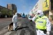 Phát hiện ca bệnh nghi dịch hạch, Trung Quốc đưa ra cảnh báo y tế cấp độ 3