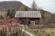 Chuồng bò được cải tạo thành ngôi nhà đẹp thơ mộng