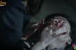 'Hướng dương ngược nắng' tập 44: Châu giết Kiên trong giấc mơ