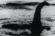 Video chứng minh quái vật hồ Loch Ness có thể là cá chình