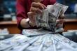 Tỷ giá USD hôm nay 13/3: Đồng USD tăng giá