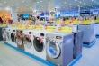 Điện máy Xanh tháng 11: Mua máy giặt, tủ lạnh có cơ hội nhận quà trị giá 31,9 triệu đồng