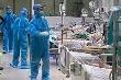 Bệnh nhân COVID-19 hành hung nữ điều dưỡng Bệnh viện Bệnh Nhiệt đới Trung ương