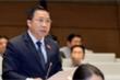Ông Lưu Bình Nhưỡng: Đại biểu cố tình mang quốc tịch quốc gia khác là vi phạm