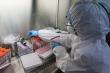 Kế hoạch tiêm 4,8 triệu liều vaccine COVID-19 cho người Việt Nam