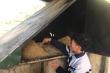 Thầy giáo vùng cao sáng chế hệ thống ủ nước nóng chống rét cho học sinh