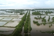 Hải Phòng thu hồi gần 400ha đất bãi bồi ven biển bị 'bỏ quên' cả thập niên