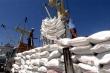 Phát hồ sơ mời thầu lại 182.300 tấn gạo dự trữ quốc gia từ 17/4