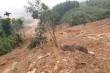 Đất đá trút ào ạt xuyên đêm, cả ngôi làng ở miền núi Quảng Ngãi tan hoang