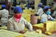 Doanh nghiệp kinh doanh bột sắn, vàng mã, nhựa thông… trả cổ tức 'khủng'