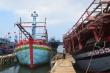 Sở NN-PTNT Quảng Nam: 'Lệnh cấm đánh bắt cá của Trung Quốc không có giá trị'