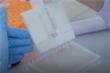 Video: Bên trong khu bào chế vaccine COVID-19 'made in Vietnam'