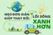 Infographic: 5 mẹo đơn giản để có lối sống xanh hơn
