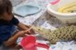 Bé gái bình thản ngồi đánh răng, đánh phấn cho cá sấu bạch tạng