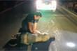 Nhân viên cứu hộ hồi sức cấp cứu voi bị xe tông