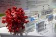 Trung Quốc hứa bán vaccine COVID-19 giá hợp lý ra thế giới