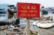 Kinh hãi rác thải hôi thối, bủa vây âu thuyền Thọ Quang ở Đà Nẵng