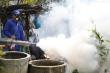 Gần 6.700 ca mắc sốt xuất huyết ở Đà Nẵng