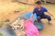 Cá chết trắng trên sông ở Nghệ An: Các chỉ số không có dấu hiệu bất thường