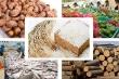 Quý I, kim ngạch xuất khẩu nhiều nông sản chính giảm mạnh