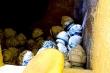TP.HCM: Chùa Kỳ Quang 2 gỡ di ảnh, chất tro cốt của người đã khuất vào xó?