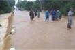 New Zealand hỗ trợ 116.000 USD giúp khắc phục bão lũ, lở đấtở miền Trung