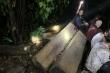 Công an mật phục bắt quả tang nhóm lâm tặc phá rừng nguyên sinh
