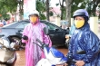 Video: Phụ huynh Đắk Lắk đội mưa ngoài cổng trường chờ con thi THPT 2020