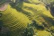 Quảng Ninh làm thế nào để đón 3 triệu khách du lịch trong Quý IV/2020?