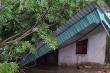 Dông lốc cuốn bay nhiều nhà cửa, hoa màu ở Nghệ An, Thái Nguyên